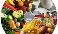 Roda_dos_alimentos2